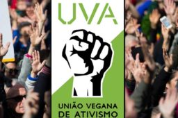 UVA e a carta de Recife